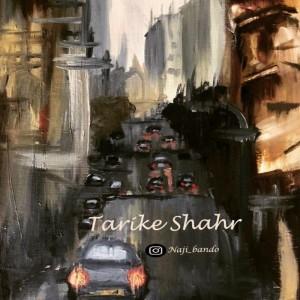 آهنگ تاریک شهر از ناجی