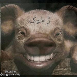 آهنگ ژ. خوک از تاوان و دلقک