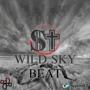بیت Wild Sky از ST