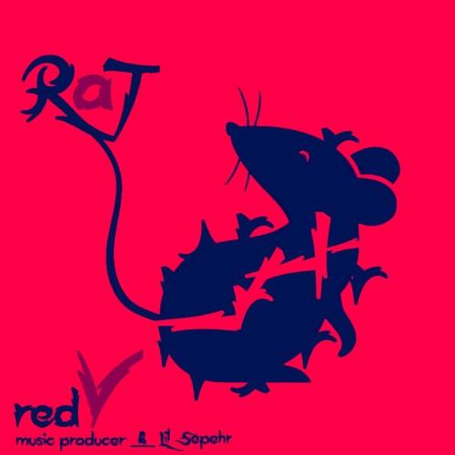 آهنگ موش از رِدوی